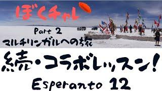 【ぼくチャレ 2】DuolingoでEsperanto #12 エスペラントに初めて触れるゲスト2人!どうなる?