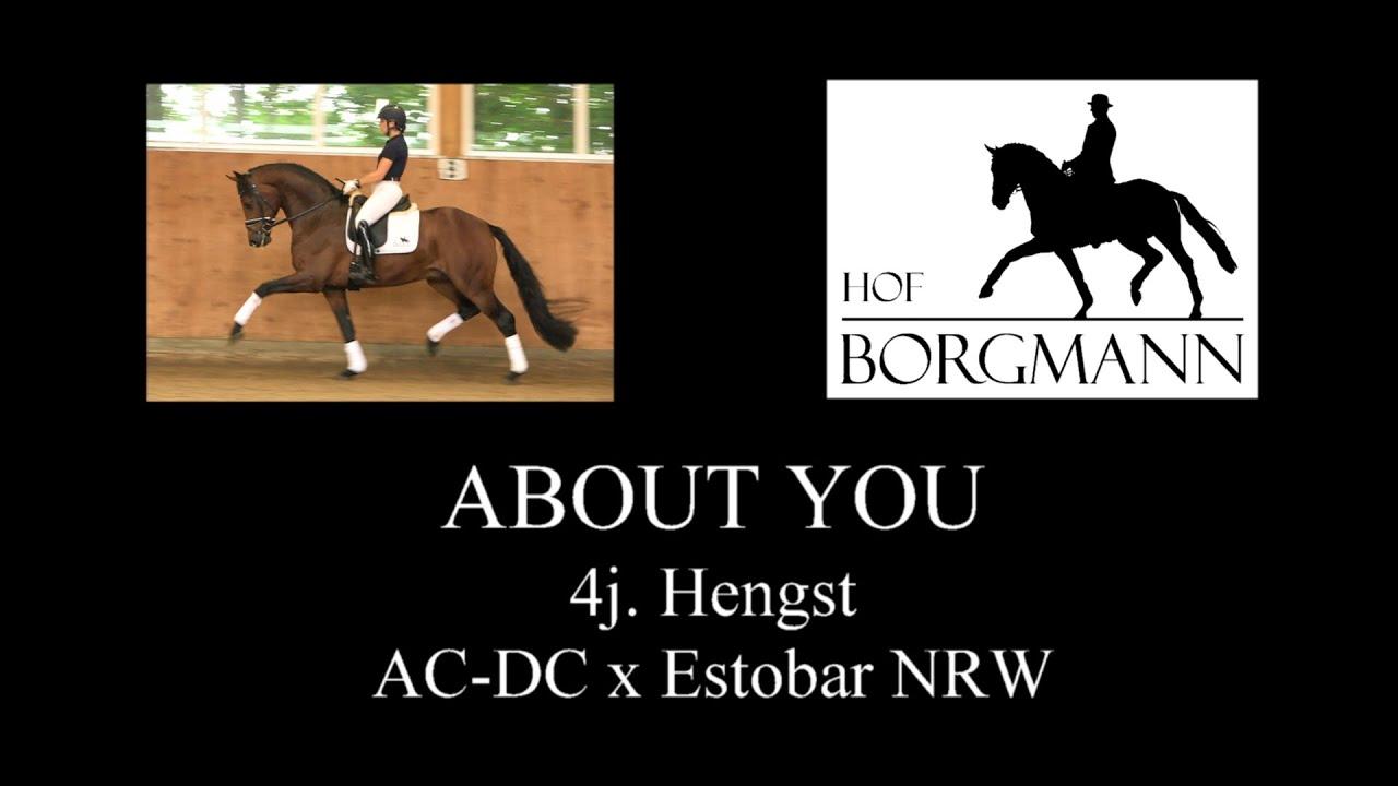 Vente Borgmann Hof Auction: 1,65 million pour le Top Price