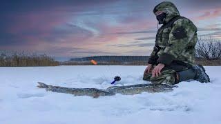 активная рыбалка в глухозимье столько подъемов я еще не видел зимняя рыбалка 2021
