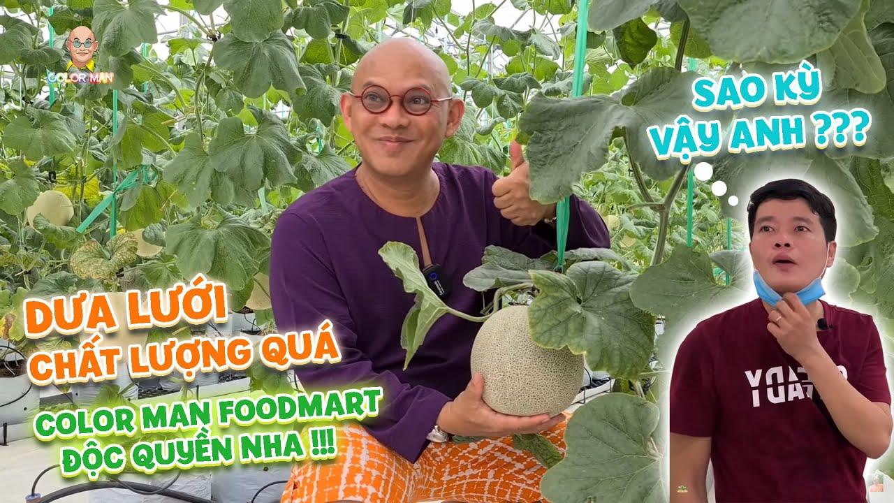 """Khương Dừa bận bán sầu riêng """"thuê"""" Color Man đi thu mua dưa lưới siêu sạch ai dè mất mối luôn !!!"""