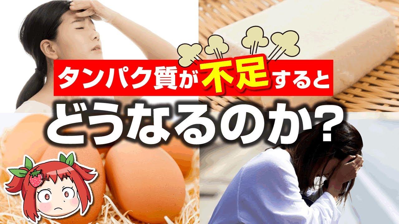 【ゆっくり解説】タンパク質が不足すると風邪をひきやすくなる!?