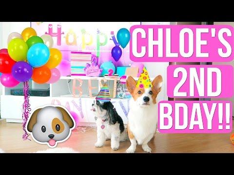 CHLOE'S BIRTHDAY PARTY EXTRAVAGANZA!!!