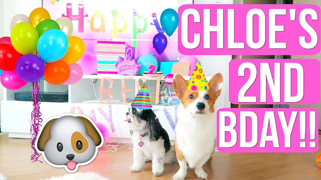 CHLOES BIRTHDAY PARTY EXTRAVAGANZA