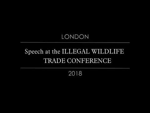 Alexandra Bounxouei - Speech at the ILLEGAL WILDLIFE TRADE CONFERENCE 2018 in London