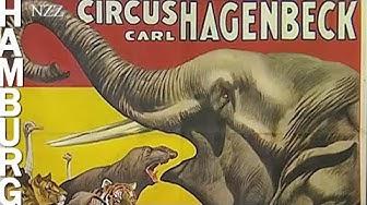 Tierpark Hagenbeck - der Hamburger Zoo früher und heute (2003)