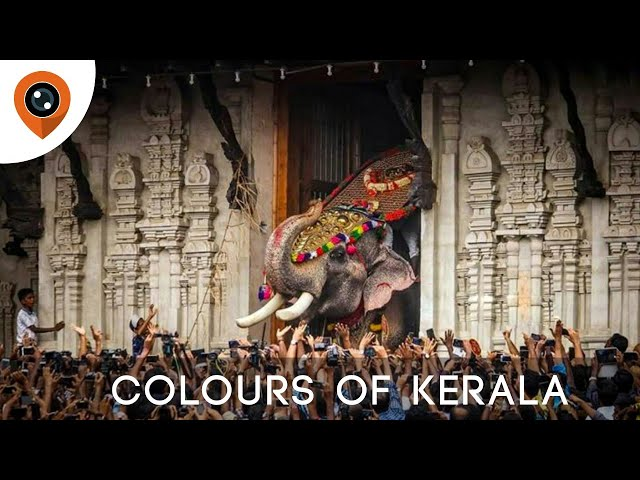 Colours of Kerala