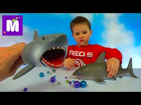 Акула растущая в воде и игрушечная акула Челюсти, выращивание в воде