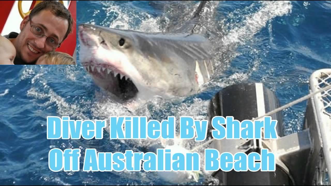 """Shark Attack"" Diver Killed By Shark Off Australian Beach"