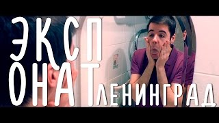 Ленинград - Экспонат/На лабутенах (топ пародия ин зэ ворлд нах)