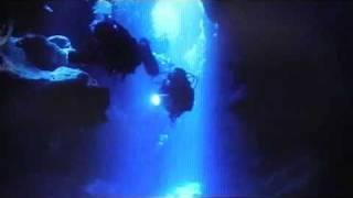 Der Schwarm Trailer 2010 (fanmade)