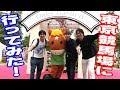 東京競馬場に行ってみた! - Let's go Tokyo Racecourse -