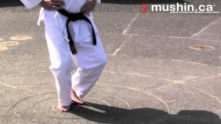 Karaté Shotokan Positions de base:  Zenkutsu-dachi et Kokutsu-dachi / Shotokan Karate basic stances