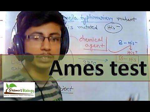 Ames test