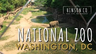 Camping at Pohick Bay Regional Park and National Zoo in Washington DC