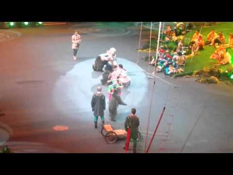 Цирк братьев Запашных. Шоу Хозяйка мртвого озера 20.12.2015