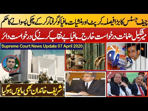 Mir Shakil Ur Rehman's Request Bail Rejected    Sharif Families Hopeless After Chief Justice Order