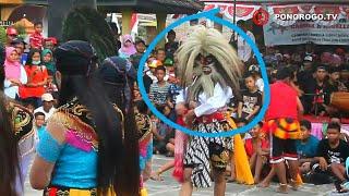 Heboh !!! Jathil Cewek Cantik Ikut Menari Bujang Ganong, Reog Ponorogo Di Balai Desa Nambak Bungkal