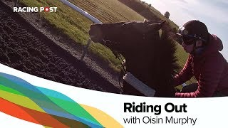 Riding out with Champion-elect Oisin Murphy