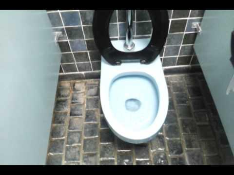 Bathroom Tour: BLUE American Standard Toilet Le Chateau Village ...
