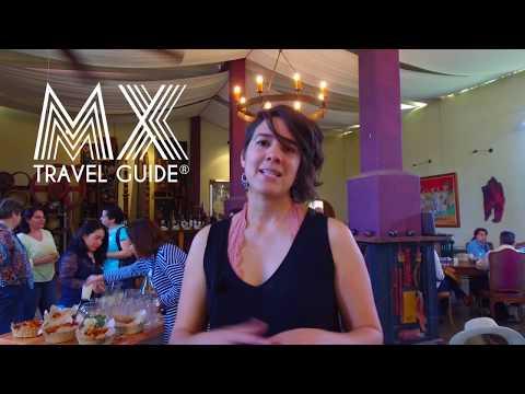Viñedo Dos Búhos I Taller de Apreciación de Vinos I MX Travel Guide