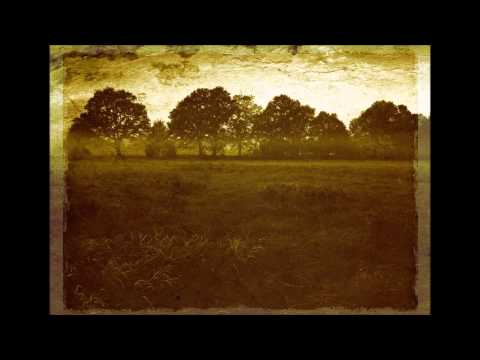 "Wöljager ""Üöwer de Heide"": German Dark Folk"