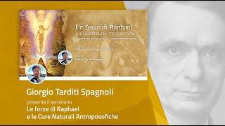SEMINARIO ONLINE: Le forze di Raphael e le Cure Naturali Antroposofiche - Giorgio Tarditi Spagnoli