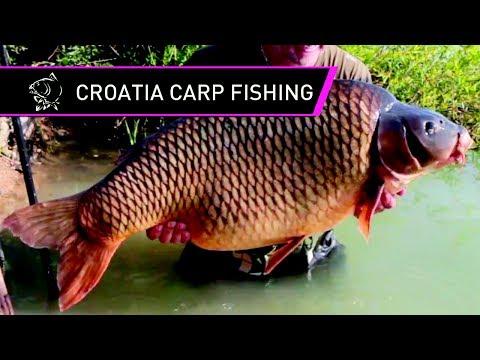 Steve Briggs Carp Fishing In Croatia