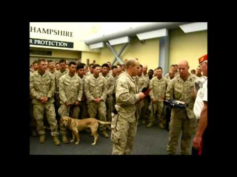 Pease Greeters - USMC - Marine Hymn -1st Battalion, 7th Marine Regiment - 09/11/14