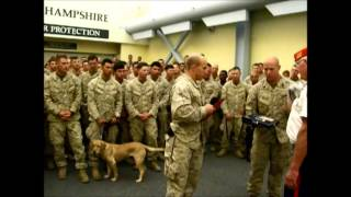 Pease Greeters - USMC - Marine Hymn -1st Battalion, 7th Marine Regiment - 09/11/14