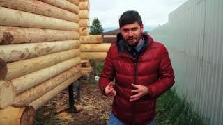 видео Дом из оцилиндрованного бревна своими руками основные плюсы и минусы, этапы строительства