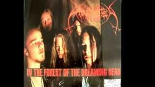 In The Forest Of The Dreaming Dead