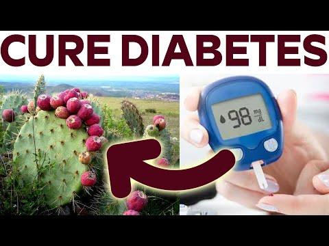 Is Nopal Cactus Good For Diabetics.? - Does Eating Cactus Lower Blood Sugar.?