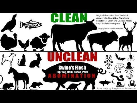 Biblical Health WARNlNG!  Believer's In Messiah  MUST Obey The DIETARY LAWS thumbnail