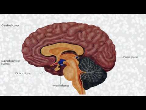 The benefits of Melatonin and Sheer Sleep