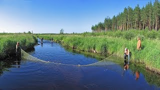 16 Необычные случаи на рыбалке
