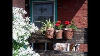 Обзор веранды дома. Декоративные композиции из цветов, клеток и горшков.
