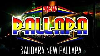 New Palapa Buta