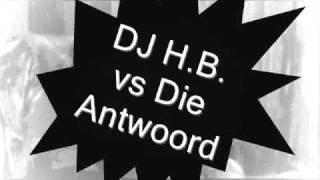 DJ H.B. vs Die Antwoord - Enter The Ninja (Bootleg Edit).wmv