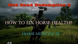 "Red Dead Redemption 2 online ""Horse Health Cure"""