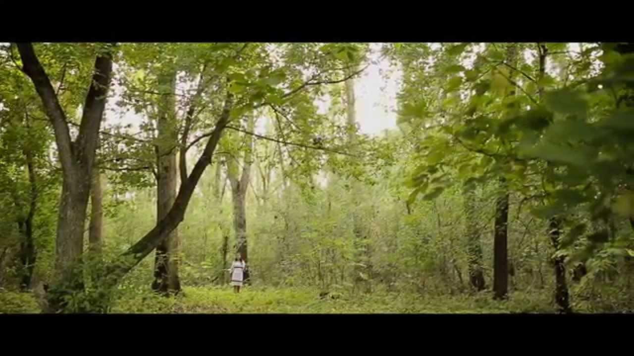 padure verde padure taraful haiducilor