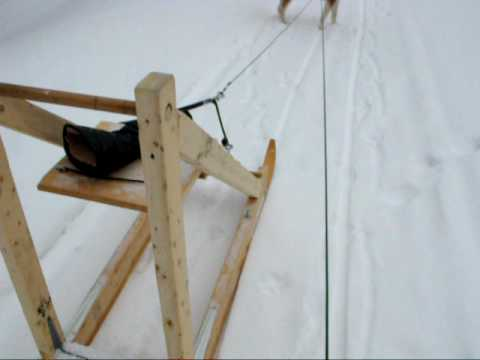 trottinette neige avec husky tra neau chien en janvier 2009 youtube. Black Bedroom Furniture Sets. Home Design Ideas
