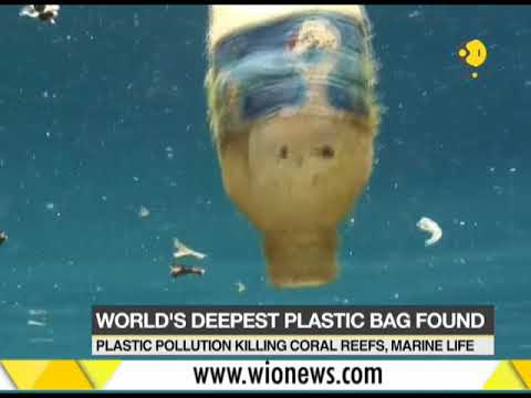 World's deepest ocean trench found with loads of plastic