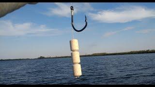 Рыбалка на ПЛАНКТОН и море бесплатных приманок для вас