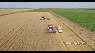 Уборка урожая в Крыму, с высоты птичьего полета июль 2015 года Сакский район