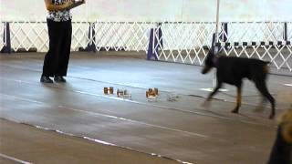 Cooper - Lackawanna Kc - Utility A - July 28, 2012