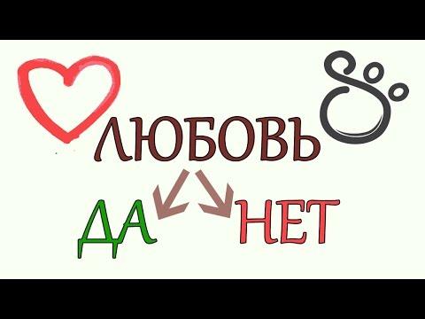 Как понять, люблю или нет? | SHTUKENSIA
