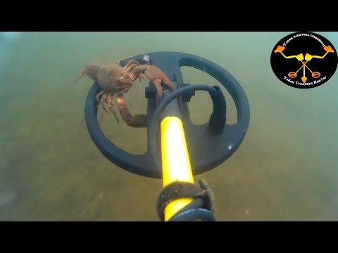 Подводный коп 2. Рак + серебряное кольцо Underwater metal detecting. Crayfish + silver ring