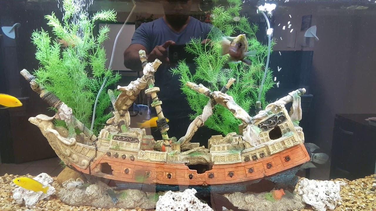 Sunken Ship 125 Gallon Aquarium Youtube