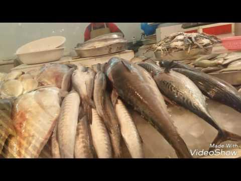 Fish Meat Vegetable market Dammam saudi arabia