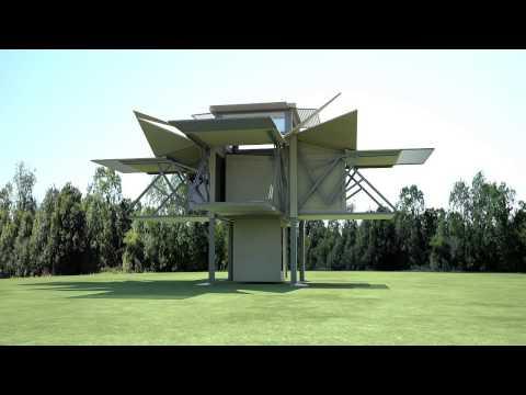 TEN FOLD - Tree House